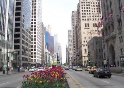 """9/4 IIC Chicago presentazione """"Anoressia"""""""